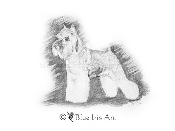 Blue Iris Art
